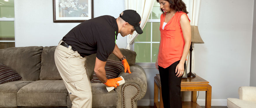 Huntington, NY carpet upholstery cleaning